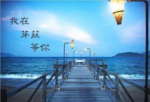 春节直航包机芽庄纯玩5天